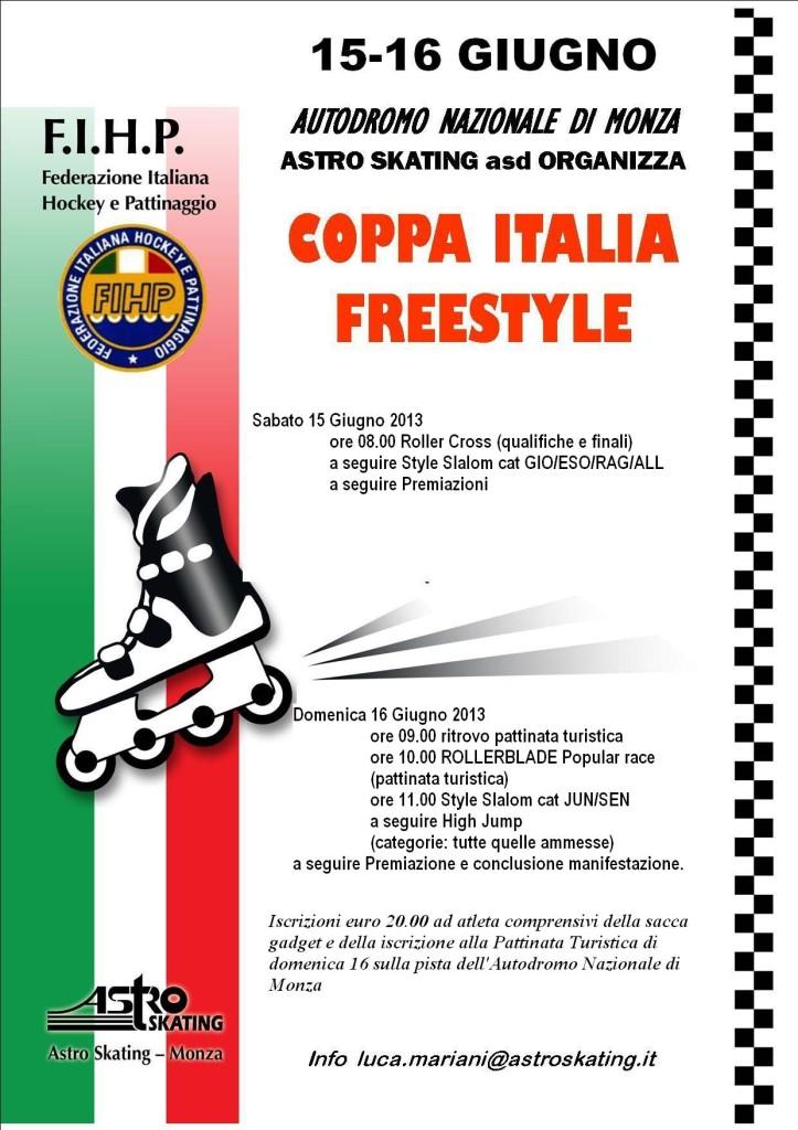 VOLANTINO coppa italia 2013