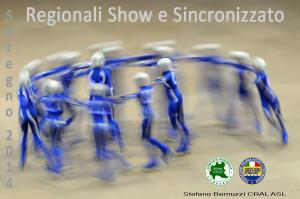 Seregno2014CRL