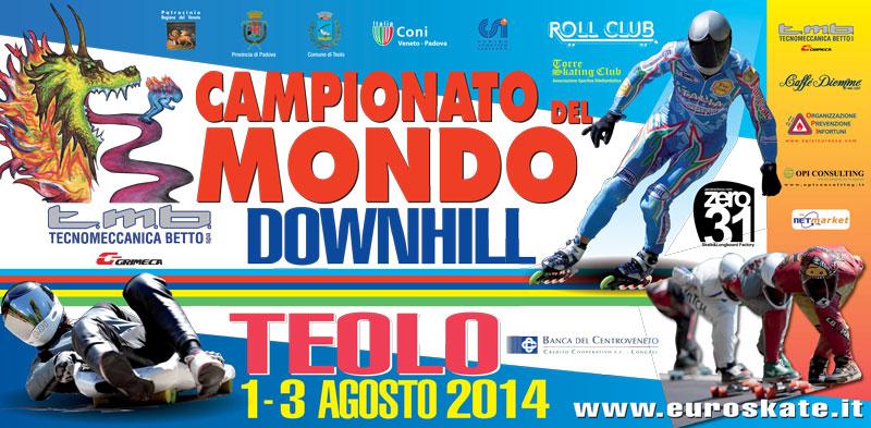 6x3-downhill-2014_cor1-(1)